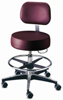 Brewer Counter Height Stool with Footring and Backrest