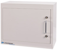 Lakeside Single Door/ Double Lock Narcotic Cabinet